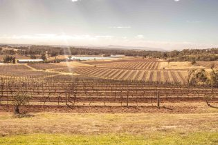 Tour Guide Tips For Hunter Valley