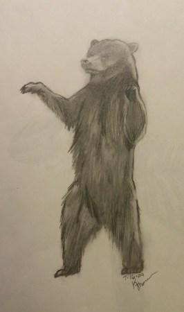 Bear, Pencil, 16 July 2009