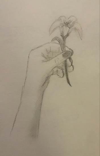 Hand Drawing, Pencil, July 2008