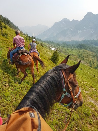 Horses and mountains