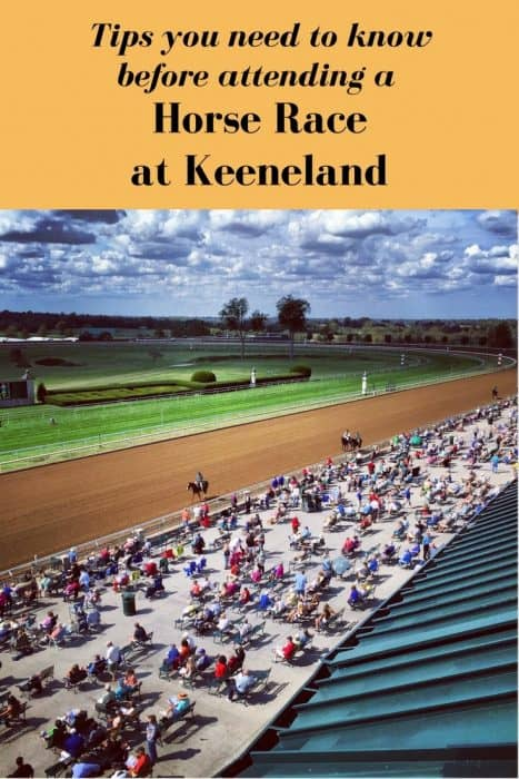 Tips you need to know before attending a Horse Race at