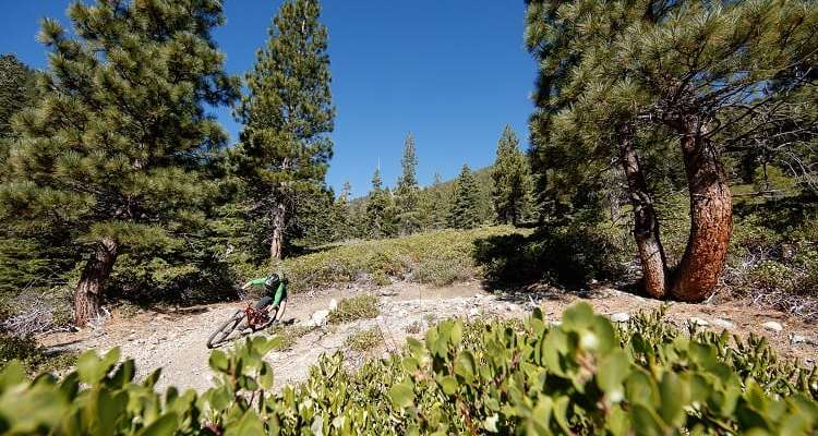 Carson Valley/Adventure Outdoors Magazine