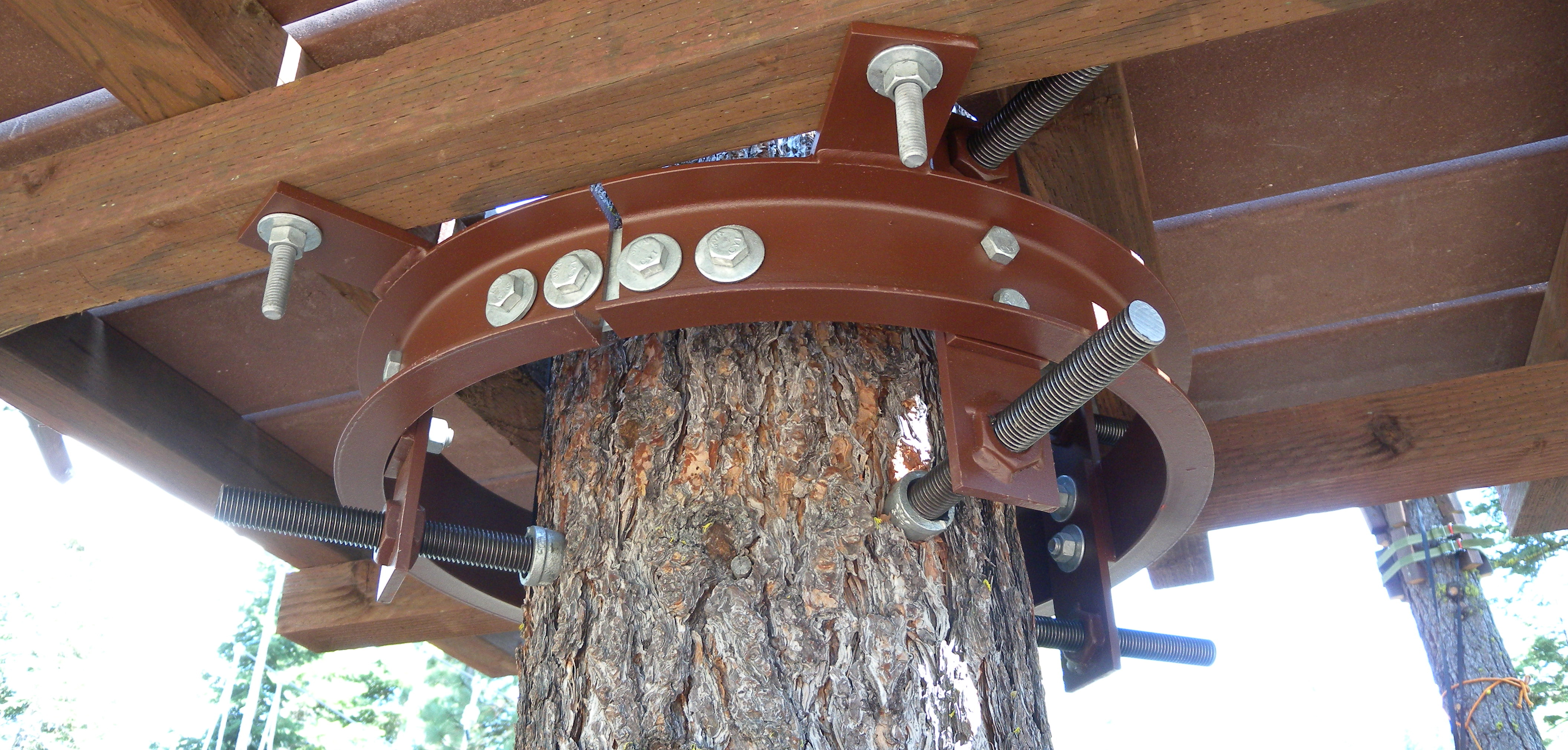 Be Smart About Tree Attachments Adventure Park Insider