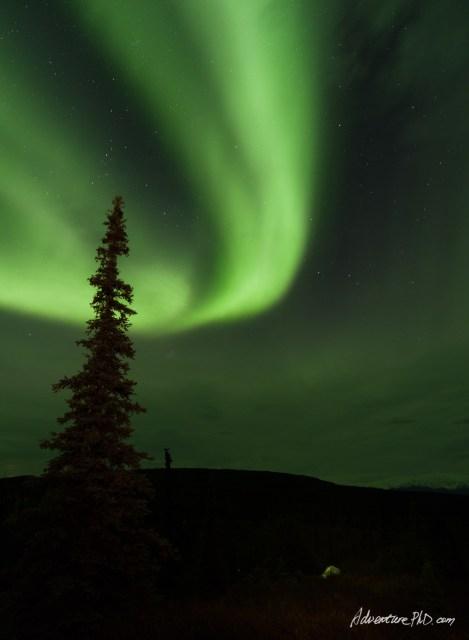 Aurora in the Wonder Lake Campground, Denali National Park, Alaska