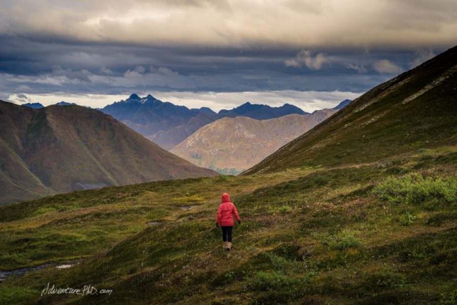 Tammy walks into the fields, Hatcher Pass. Alaska Photography
