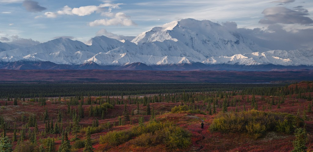 Walk into the tundra wilderness, Denali National Park, Alaska