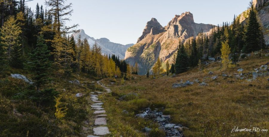 Alpine Circuit trail, Lake O'Hara, Yoho National Park