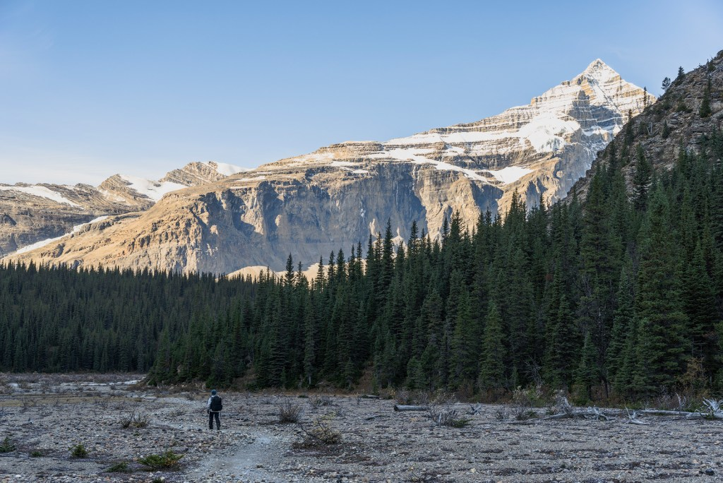 Wilderness in the Mount Robson Provincial Park