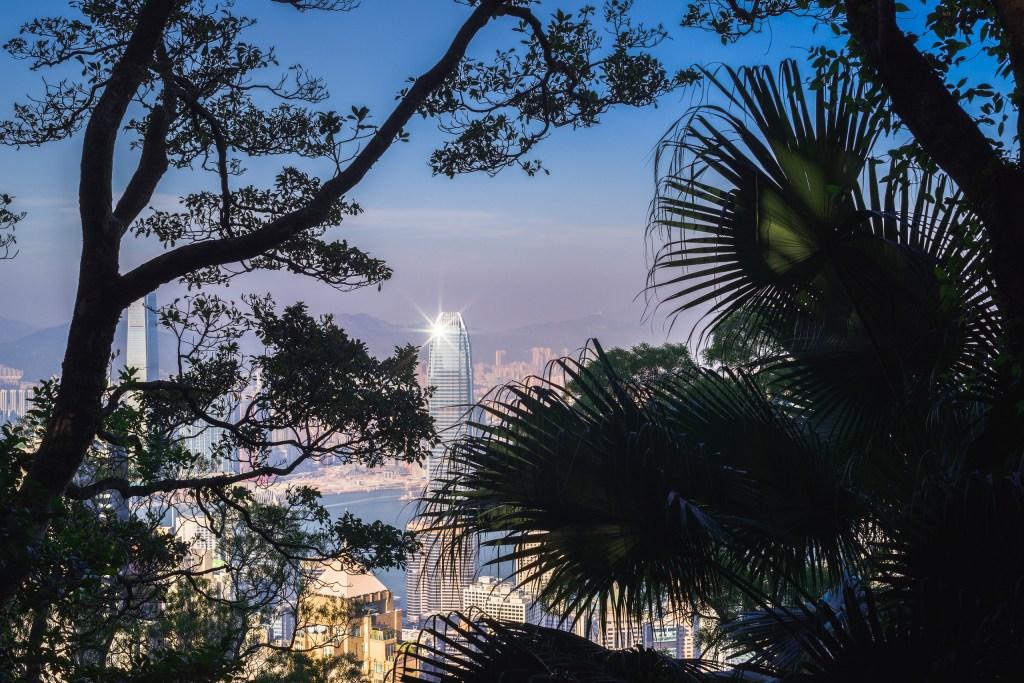 Star of Hong Kong