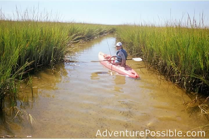 Kayaking through marsh