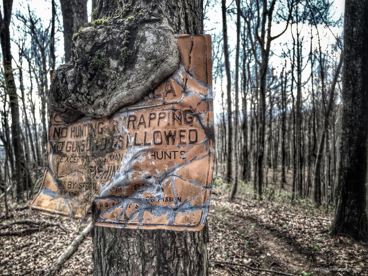 Murder on the Appalachian Trail