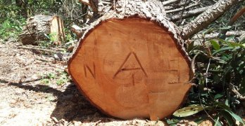 Budgeting Tool for Planning Appalachian Trail Thru-Hike