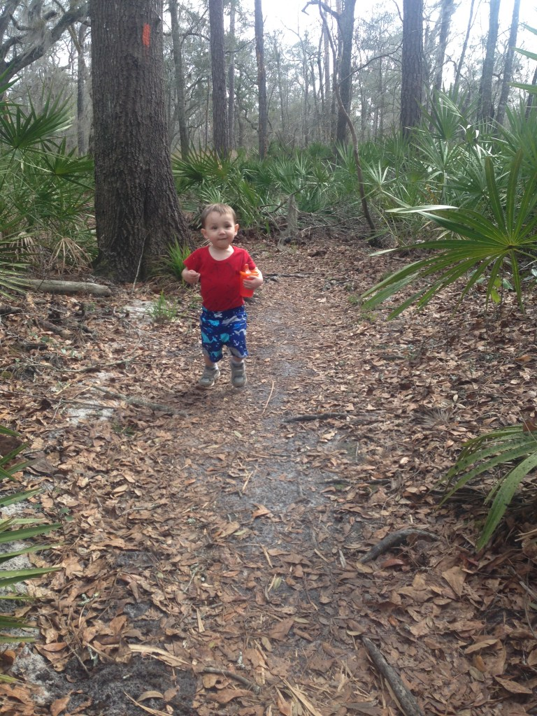 A trail leads away from the canoe launch along the Suwanee river.