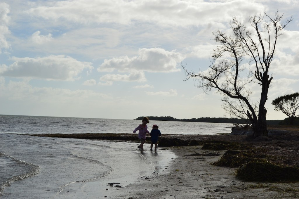 The beach on Florida Bay in Flamingo, Everglades National Park