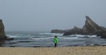 Exploring Tide Pools, Coves, and Caves along the Oregon Coast