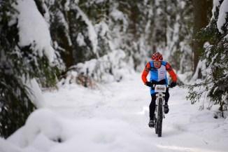 ...völlig allein im verschneiten Wald,...