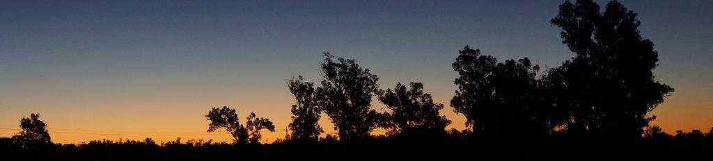 Jemmalong Weir Sunset