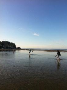 Morning walks on Puget Sound