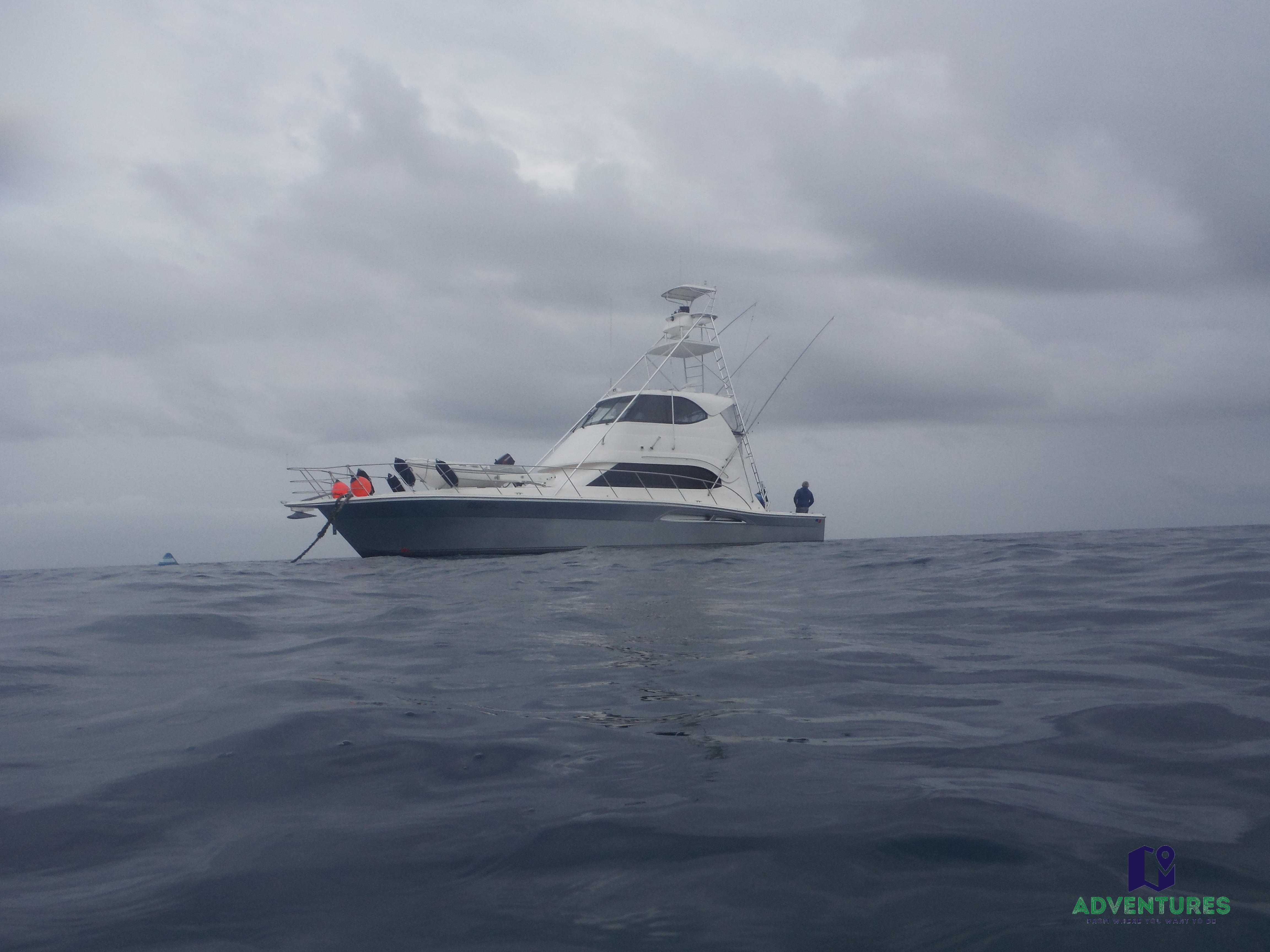 Whitsunday Fishing charter