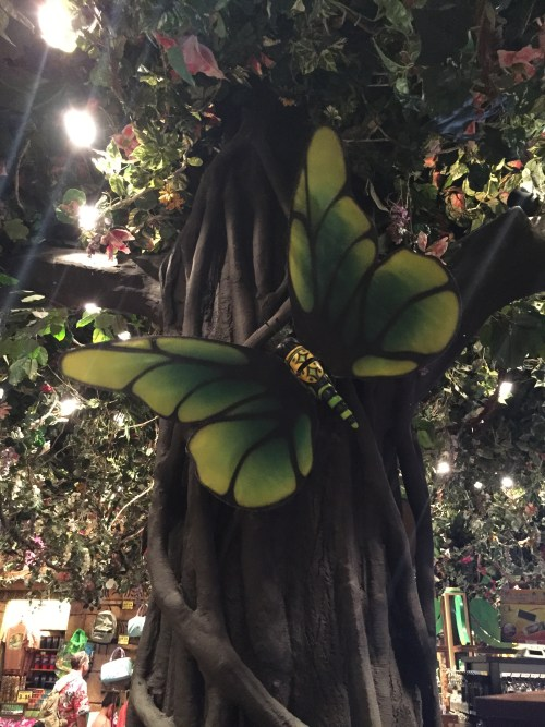 Rainforest Cafe - Disneyland