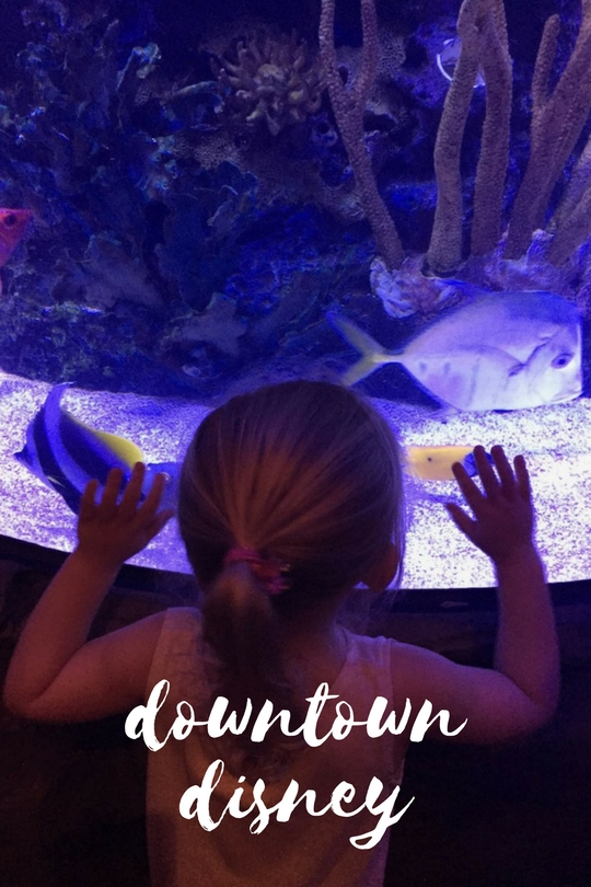 Most mornings we walked to the entrance of Disneyland from our hotel through Downtown Disney, and we have put together our top five things to do in Downtown Disney.