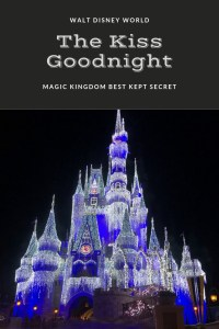 Have you ever wondered what happens when Magic Kingdom is finished for the night?