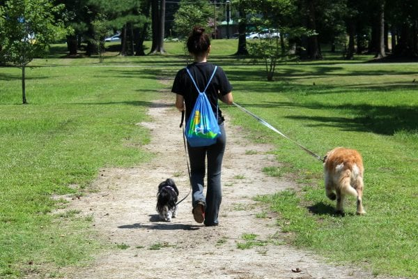 Walking at dog park