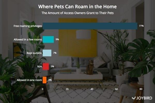 pets roam the house