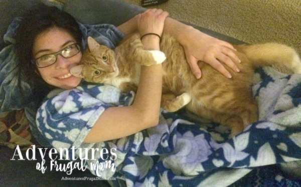 Allie Talks About Pet Nutrition by North Carolina lifestyle blogger Adventures of Frugal Mom