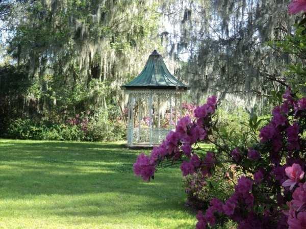 landscaping tips beginners