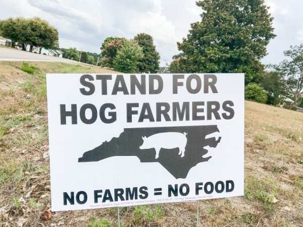One Farmer's Take on the Hog Farm Lawsuits from North Carolina Lifestyle Blogger Adventures of Frugal Mom