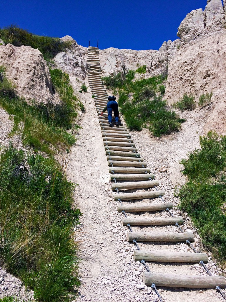 badlands_ladder
