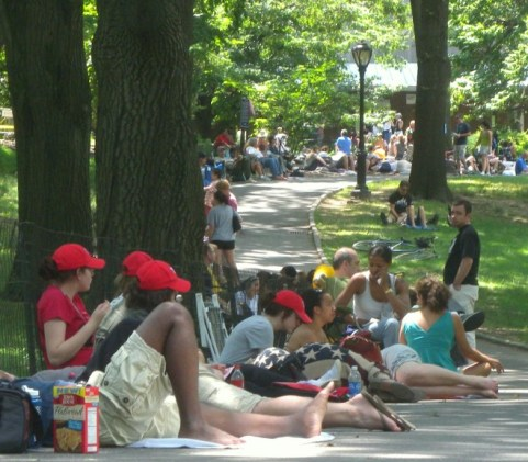 Line for Shakespeare in the Park