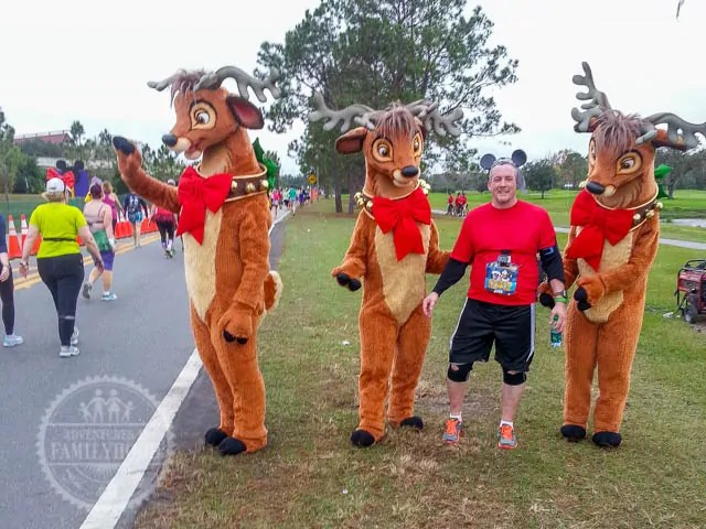 Reindeer Photo Op Walt Disney World Half Marathon