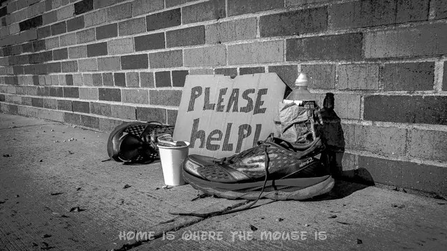 My running shoes against a brick wall with a cup and sign asking for donations