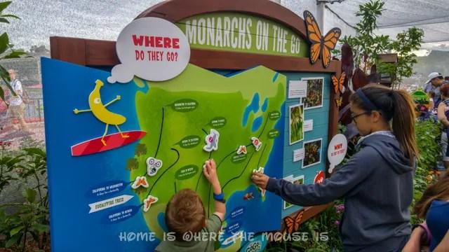 Kids learn about Monarch Butterflies at the Epcot International Flower & Garden Festival