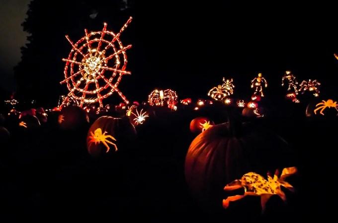 5 Reasons to Experience The Great Jack O'Lantern Blaze