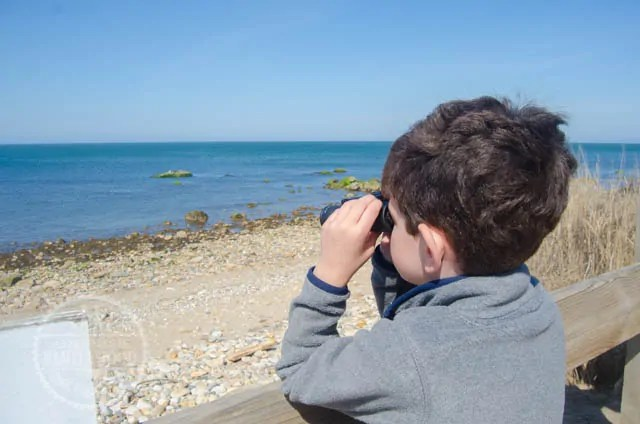 Jackson looks through binoculars at the Seals at the Montauk Point Seal Haulout