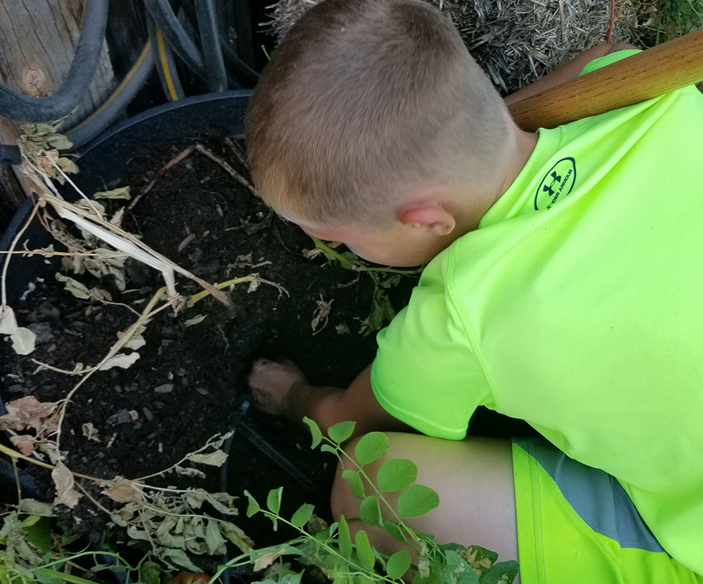 Boy digging in dirt - Gardening with kids - Adventures in NanaLand