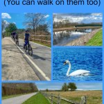 Get out onto Rhode Island's many paved bike trails! Read on to find the ones that are right for you! #RhodeIsland #biking #bikinginNewEngland