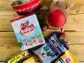 Christmas Dog Goodies Giveaways