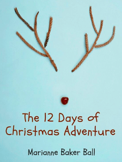 Book Review: The 12 Days of Christmas Adventure