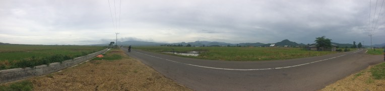 The largest rice field in Flores. Very hard to get a photo of it but it was massive.