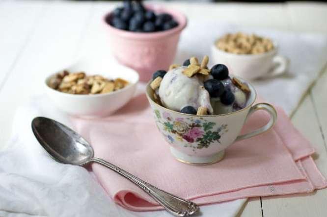 Blueberries and Yoplait ® Frozen Yogurt