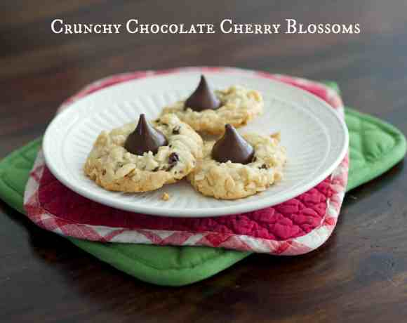 Crunchy Chocolate Cherry Blossoms