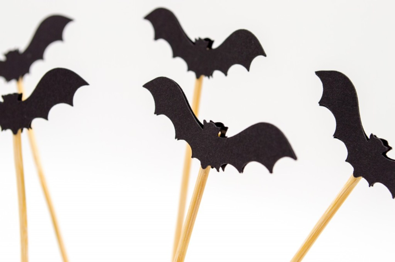 craft bats on wooden sticks