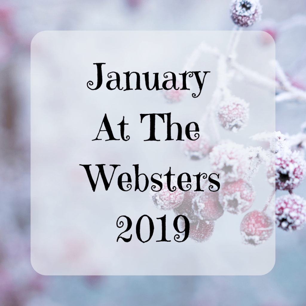January Monthly Round-Up {2019}