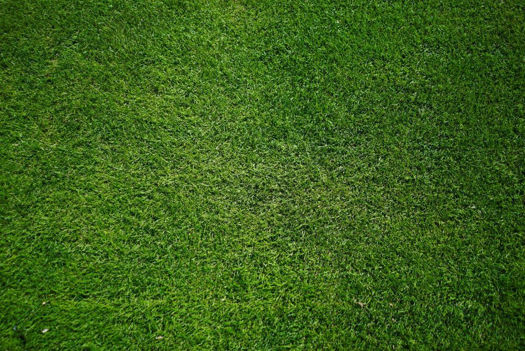 artificial grass dark green