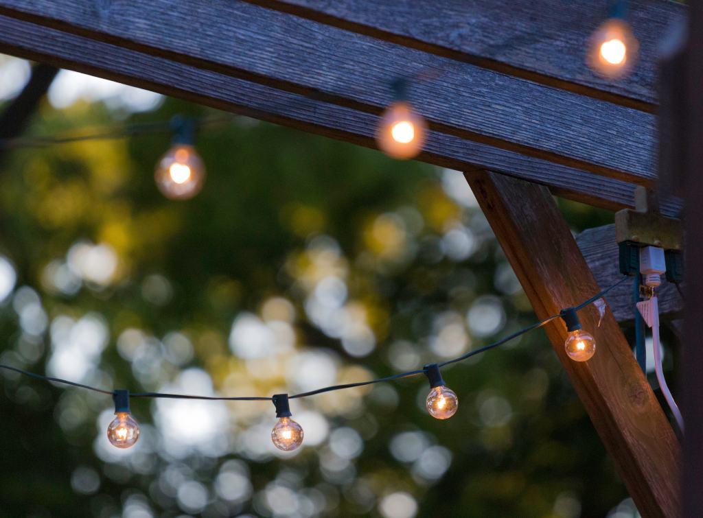 fairly lights in evening garden