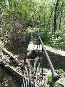 bridge in wodds